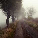 melancholy_by_matthewpoland-d4ifcjt